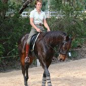 Retraining the Standardbred