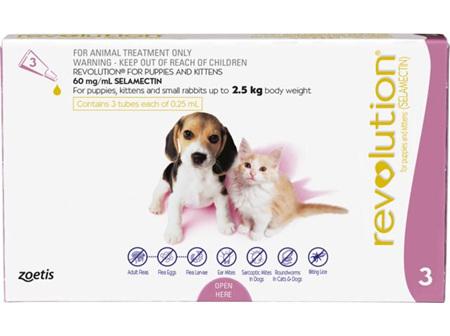 Revolution Kitten + Puppy 0-2.5kg