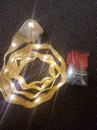 Ribbon seed lights - 2 colours available