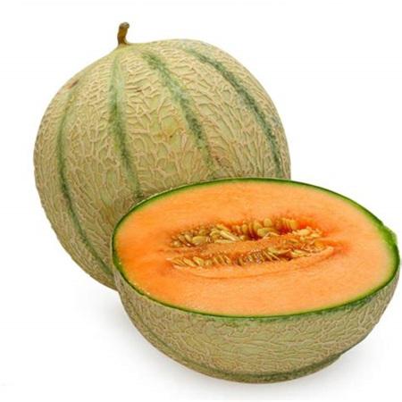 Rock Melon Organic - 1 whole