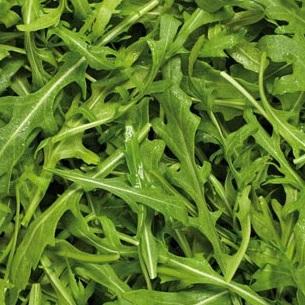 Rocket Salad Loose Leaf Certified Organic Approx 100g