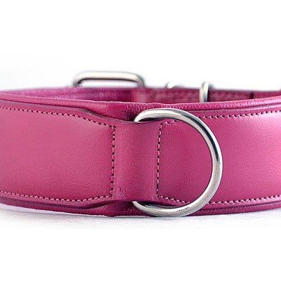 Rogue Royalty Classic Collar Pink