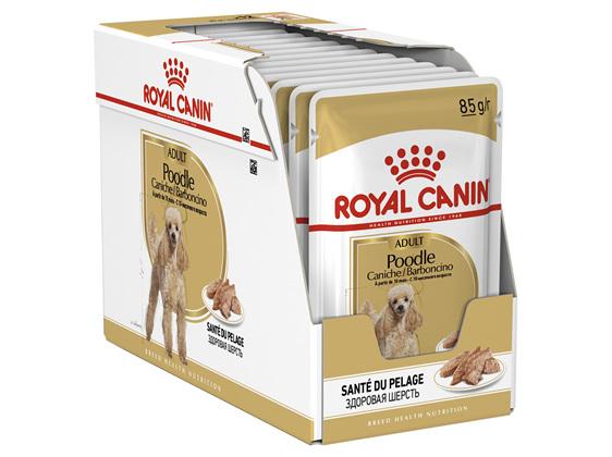 Royal Canin Adult Poodle Loaf