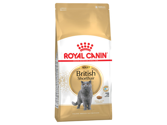 Royal Canin British Shorthair Adult