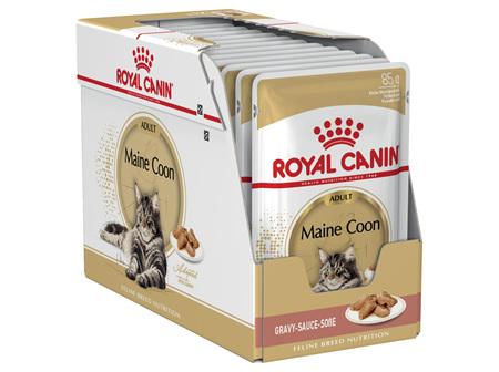 Royal Canin Maine Coon Gravy