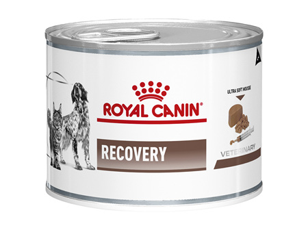 Royal Canin Recovery Wet (Feline & Canine)
