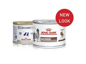 Royal Canin Recovery Wet (Feline & Canine)