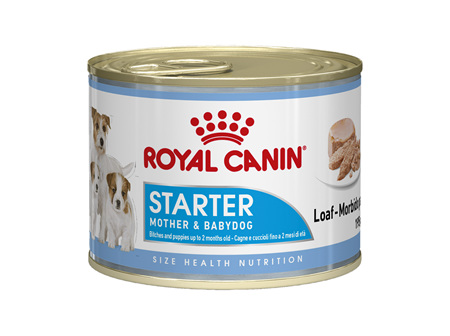 Royal Canin Starter Mother and Babydog Can