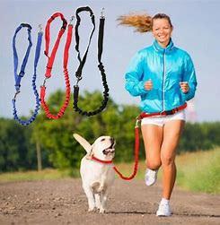 Running Belt & Leash