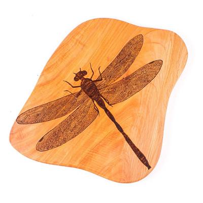 Rustic Wall Art - Dragonfly