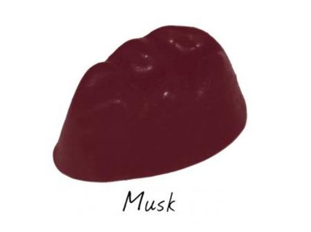 SCENTCHIPS Wax Melts Musk