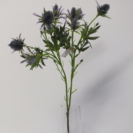 Sea Holly spray 4493