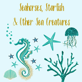Seahorses & Other Sea Creatures