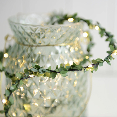 2m, 3m or 5m Spring Green Leaf Battery Seed Fairy Lights - Warm White