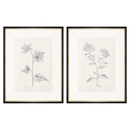 Set of 2 floral prints
