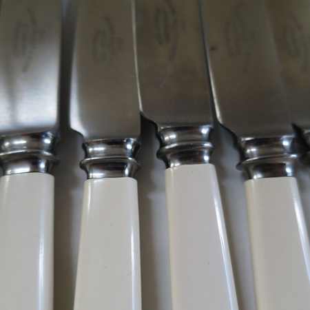 Set of 6 bone handle knives