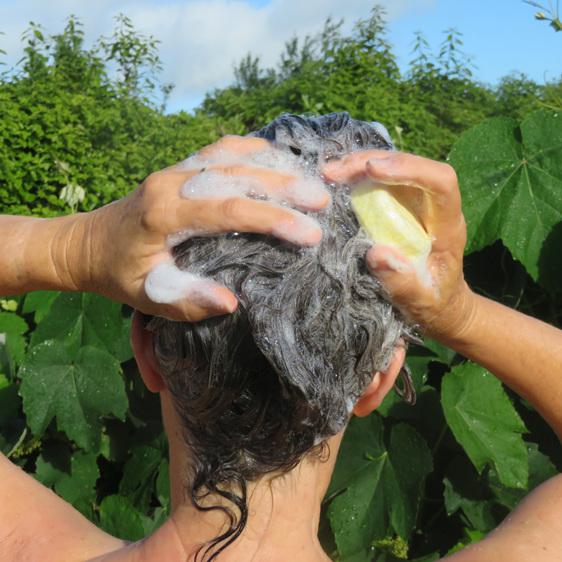 Shampoo Bar foaming in wet hair