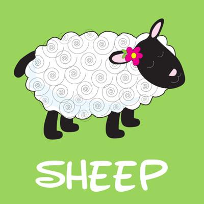 Sheep & Alpacas