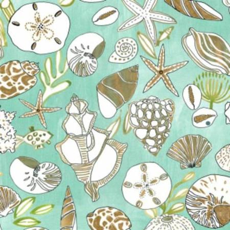 Shells in Multi 1369