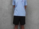 Shirt- Blue Polo