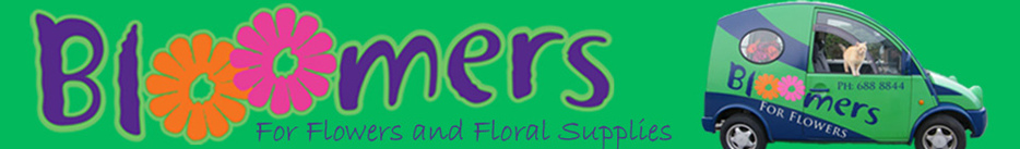 Bloomers Flower Shop