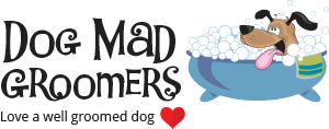 DogMad Groomers and Daycare