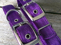 Slimline Purple Nylon Dog Collar for Small Dogs by Rogue Royalty