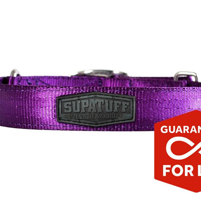 Rogue Royalty SupaTuff Purple Slimline Collar