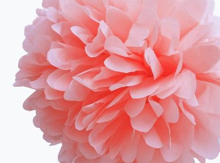 Small baby pink tissue pom poms - 21cm
