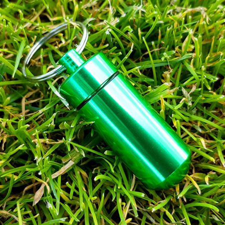 Small Bison Cache - Green, with log