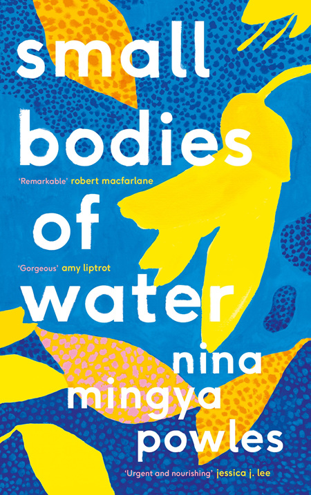 Small Bodies of Water (pre-order)
