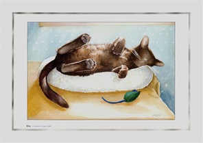 Small Burmese cat sleeping in sun with catnip mouse