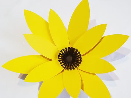 Small Phoebe flower