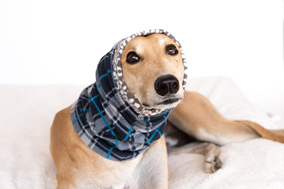Snoods and bandanas