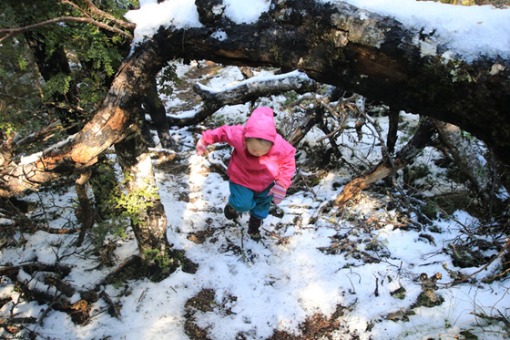 snow tramping in winter nz with a toddler