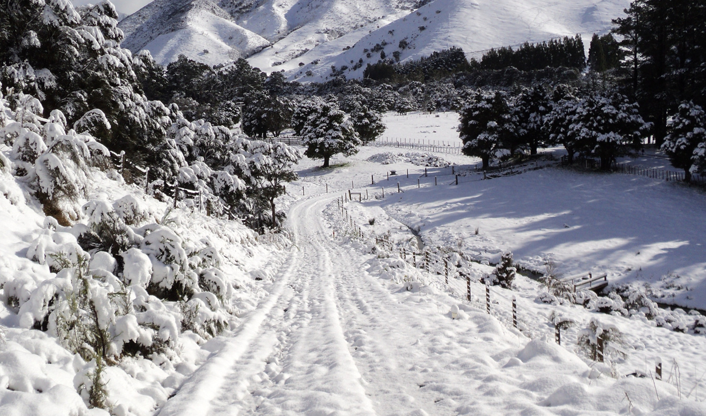 Snow in winter at Lavender Magic