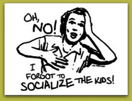 Socialisation Perspectives