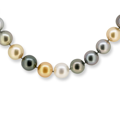 South Sea Pearl Strand Necklace