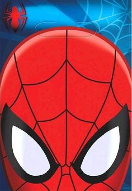 Spiderman Loot Bags x 8