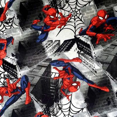 Spiderman - Neighbourhood