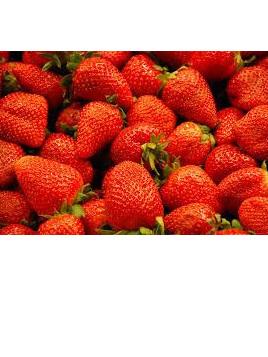 Sprayfree Local Strawberries - 1 punnet