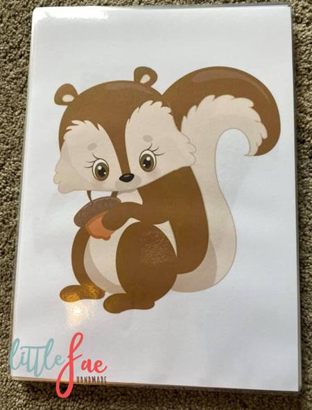 Squirrel Picture 3