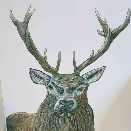 Stag A5 Print