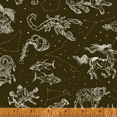 Stargazer - Zodiac Charcoal