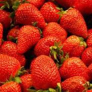 Strawberries Spray Free Local 3 Sizes