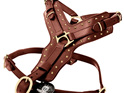 Strong Leather and Brass Dog Harness by Rogue Royalty