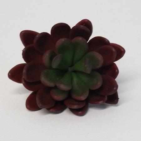 Succulent stem Red 1859