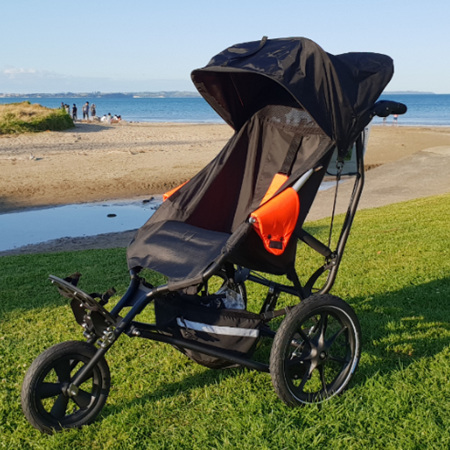 Sun Canopy for Delta Buggy