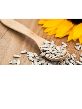 Sunflower Seeds Raw Organic Approx 100g