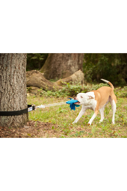 Super Tug Dog Toy, Toy attaches to tree